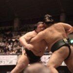 Reglas de lucha de sumo