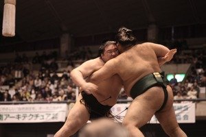 reglas de las luchas de sumo
